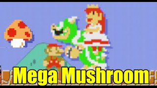 Every Enemy Transformation Effect From Mega Mushroom in Super Mario Maker (Easter Eggs)
