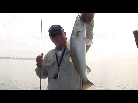 Winter Speckled Trout Fishing in Baytown, TX