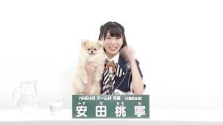 NMB48 チームM所属 安田桃寧 (Momone Yasuda)