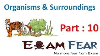 Biology Organisms & Their Surroundings Part 10 (Desert) Class 6 VI
