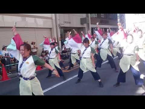 高知よさこいチーム炎~ほむら~ まるがめ婆娑羅まつり2017浜町2日目