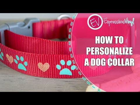 How To Personalize A Dog Collar With Heat Transfer Vinyl