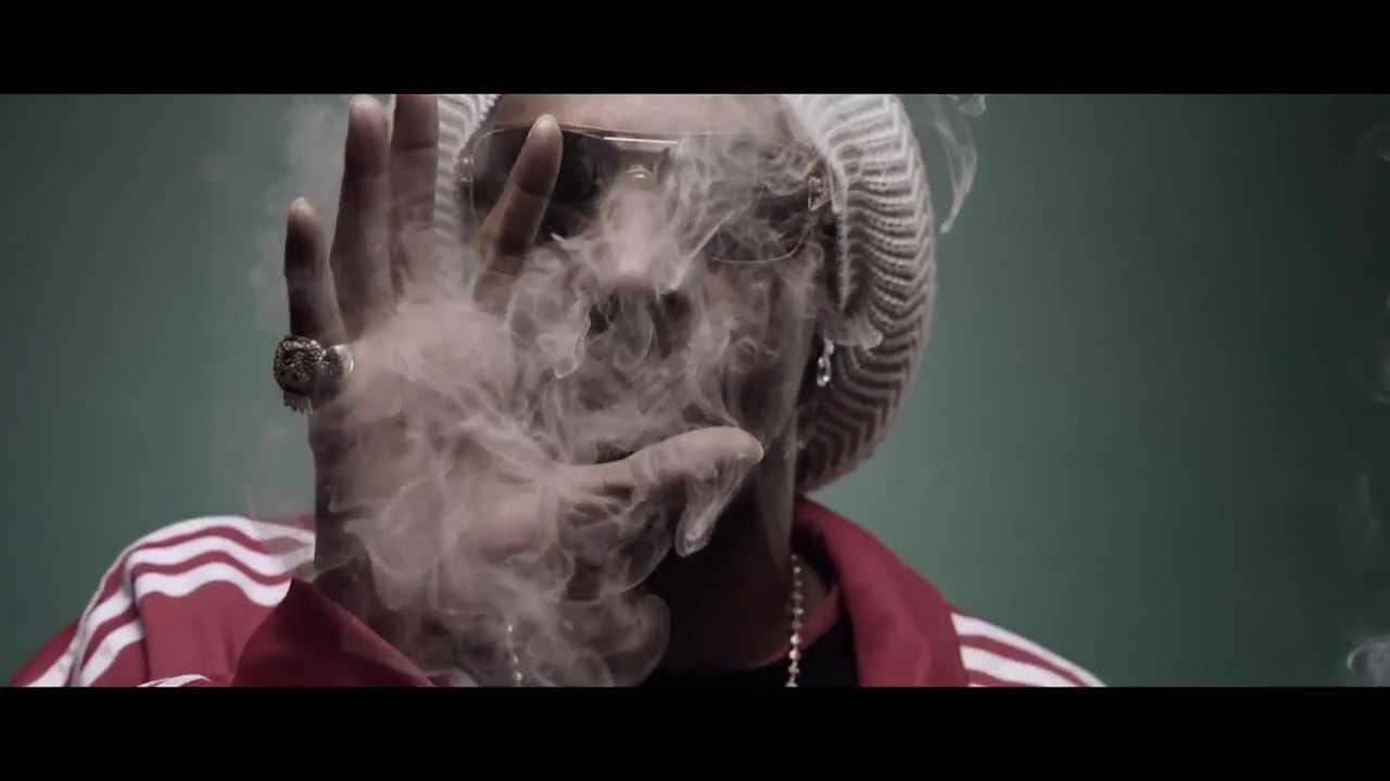 Girl Smoke Weed Wallpaper Hd Snoop Lion Smoke The Weed Ft Collie Buddz Music Video With