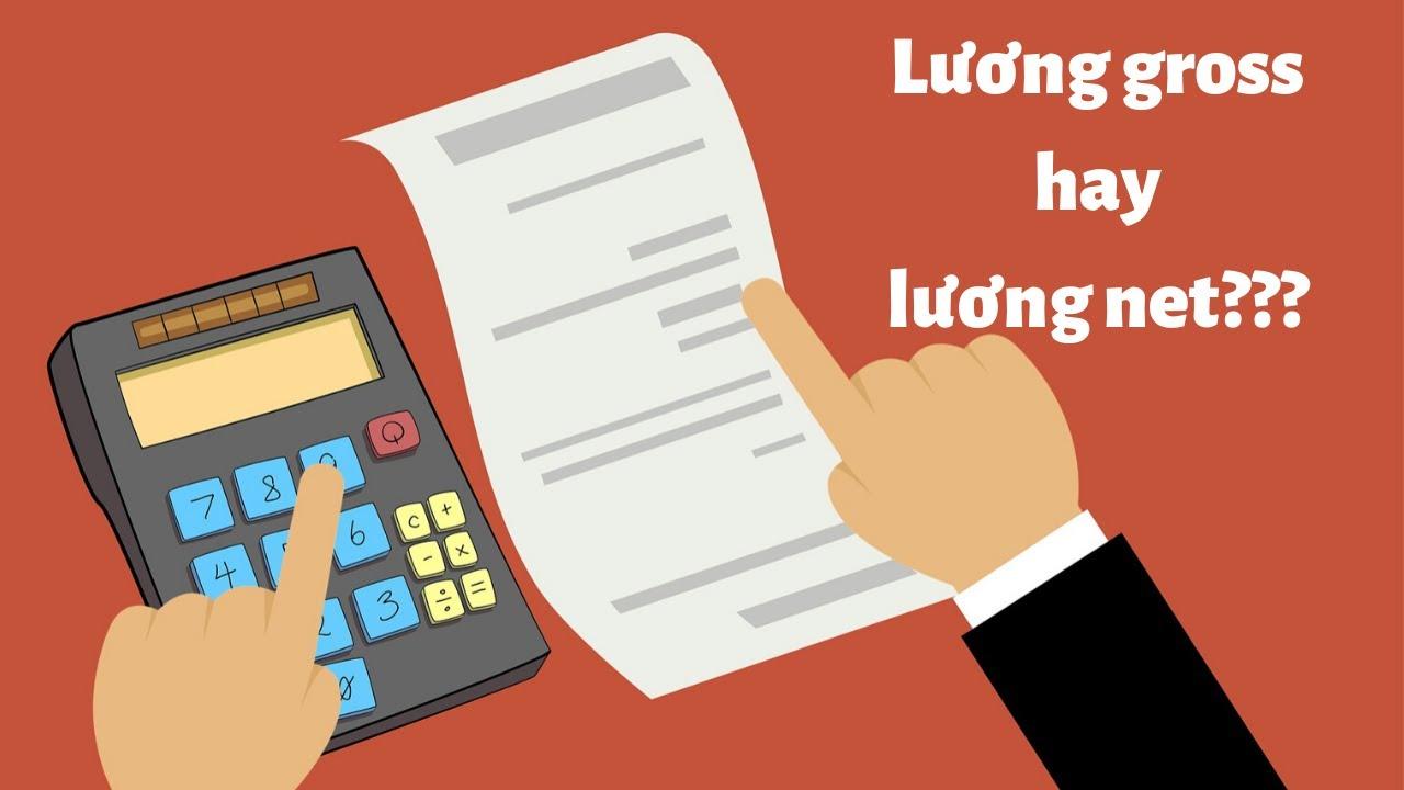 Lương gross, lương net là gì? Câu trả lời đã có trên Timviec365.vn!!!