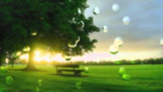 Видео обои - Пустующий парк(Скачать видео можно на странице: http://all4os.ru/personalization/video_wall/1118-video-oboi-pustuyuschiy-park.html., 2012-11-09T13:07:23.000Z)