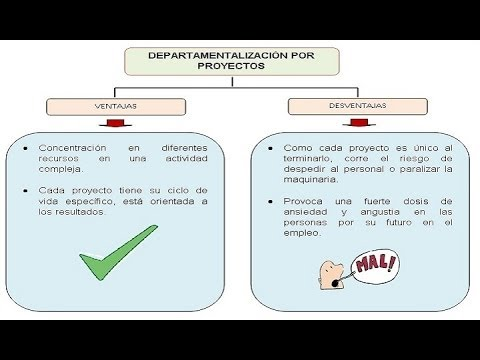 La organizaci n concepto objetivo principios y for Concepto de organizacion de oficina