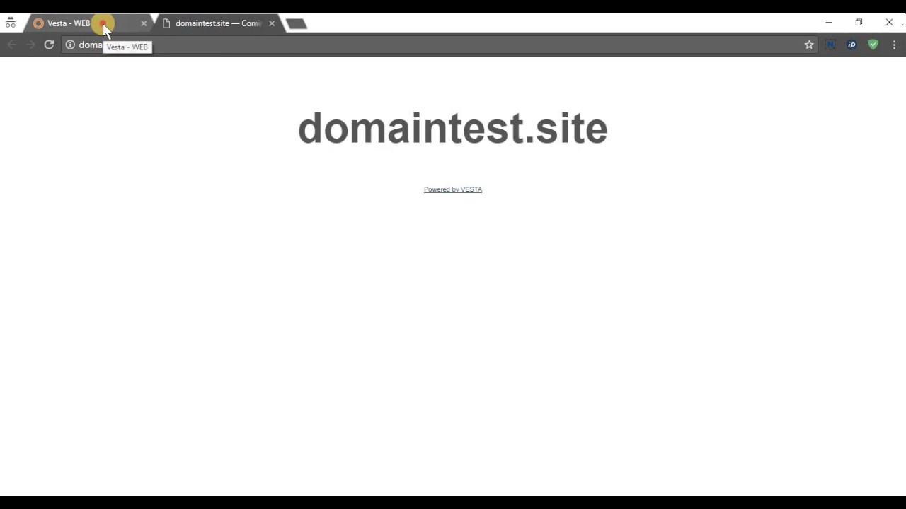 Vesta Control Panel - How to add domains