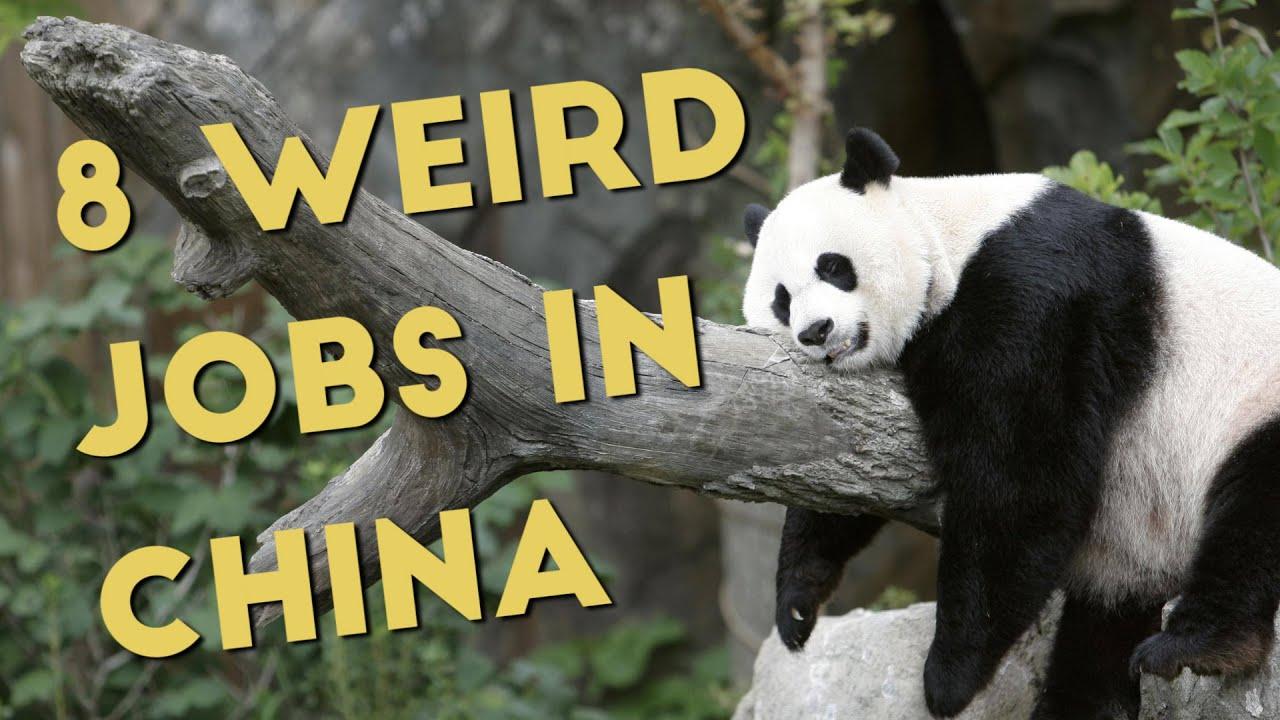 8 weirdest jobs in