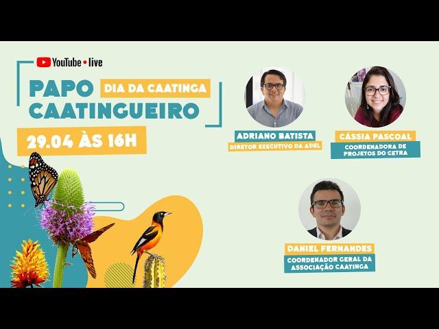 Papo Caatingueiro - Dia da Caatinga (segundo dia)