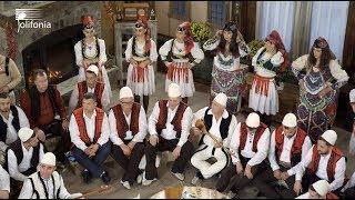 Kallushanat 7 - Naim Krasniqi & Vellezerit Mziu - Polifonia 2019