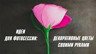 Декоративные цветы для фотосессии [Клуб молодых мам]