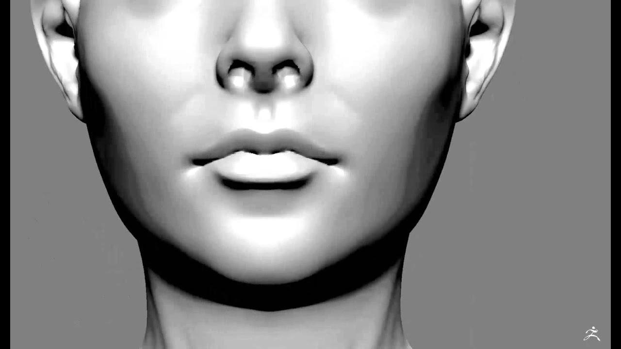 Face Sculpt  Dynamesh