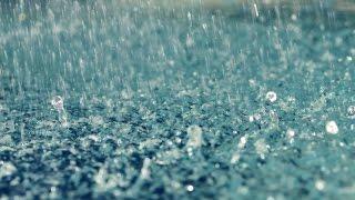 Куда уходят дожди. Автор Тимофеева Наталья Анатольевна