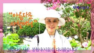 무여스님과 함께 하는 사찰여행 – 봉원사(서울 서대문구…
