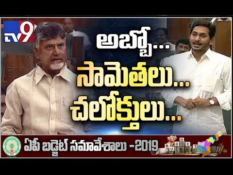 Chandrababu and Jagan criticise each other over irrigation projects in Assembly  - TV9