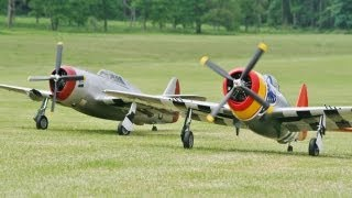 TWO GIANT 1/4 SCALE MOKI 250 cc CARF P47 THUNDERBOLTS - WESTON PARK RC MODEL AIRSHOW - 2013