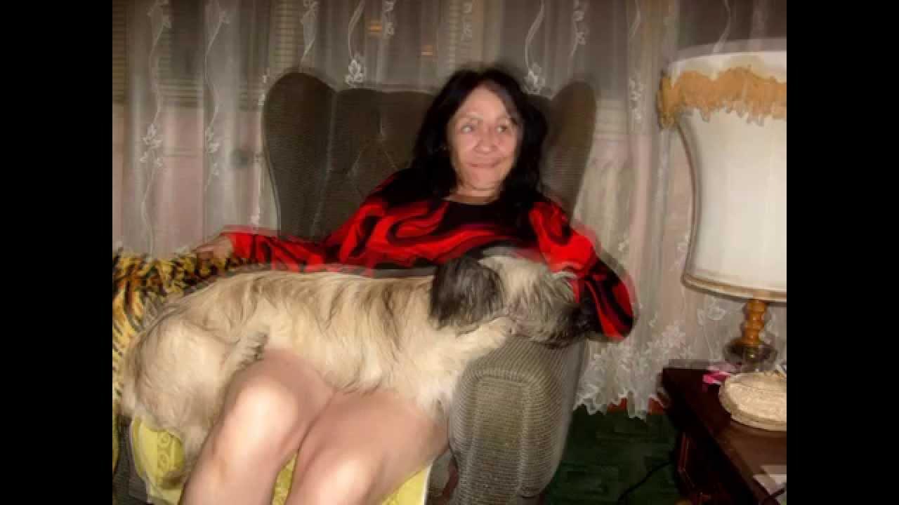 Romeo Poverty :Pes a sex pro pokročilé