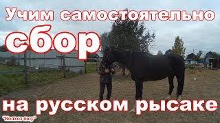 Учим самостоятельно сбор на русском рысаке//Лошадь в деревне.