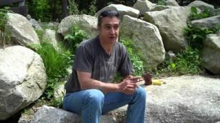 Cannabis Helped My Crohn's Disease - Matthew Lonsdale
