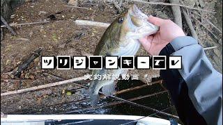 解説しながら釣りをしてみた thumbnail