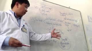 20120226_Nguyên tắc xử trí viêm tụy cấp do sỏi mật