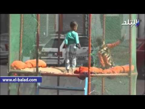 طفل بالدقهلية يلفت أنظار المارة بحركات راقصة احتفالا بالعيد thumbnail