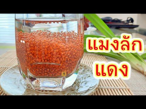 เม็ดแมงลักแดง ประโยชน์ของเม็ดแมงลักแดง อาหารสุขภาพเมนูลดน้ำหนักราคาประหยัด ด้วยแมงลักแดง Red Basil