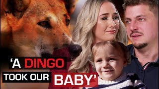 Wild dingo steals baby while parents sleep | 60 Minutes Australia YouTube Videos