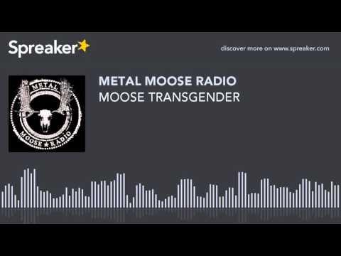 MOOSE TRANSGENDER (made with Spreaker)