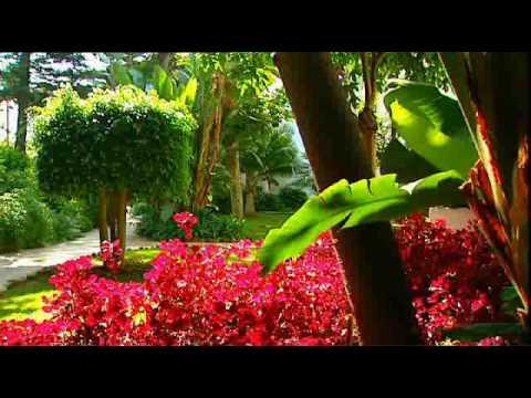 Jardines de hotel puente romano marbella m laga for Hotel jardines de bilbao