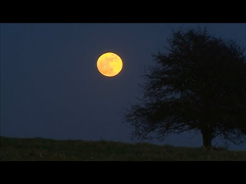 Once in a blue moon the world is treated to a super lunar eclipse