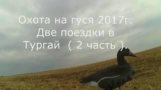 Охота на полях с чучелами 2017 год