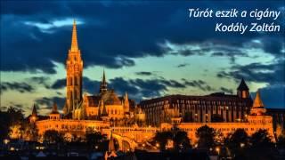 ハンガリーの風~コダーイ・ゾルターン アラカルト
