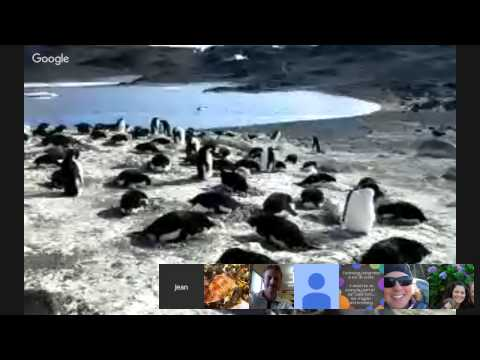 Jean Pennycook: Virtual Field Trip to Antarctica