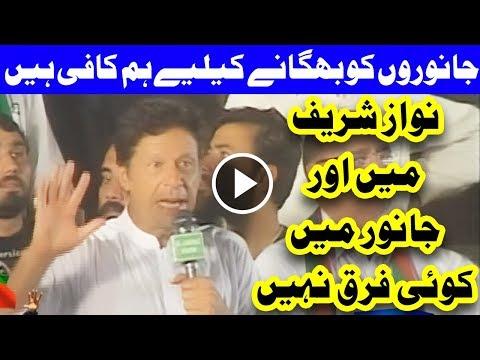 Janwarou Ko Bhaganay Ka Liya Hum Kafi Hain - Imran Khan Bashing Nawaz Sharif