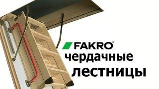 Как выбрать чердачную лестницу, Обзор чердачных лестниц Fakro