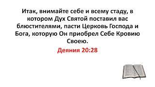 Библия, Новый Завет. Деяния 20:28