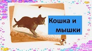 Кошка и мышки Песня для малышей