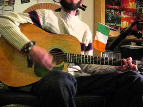 The Wild Rover (Irish Traditional Cover)