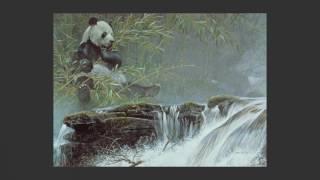 #06 Giant Panda by Robert Bateman