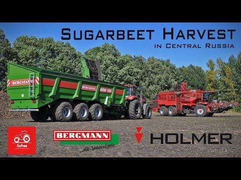 Russian Farming *Harvesting Sugarbeets on 14.000Ha*