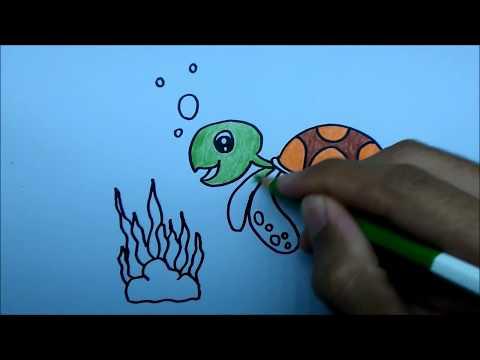 เต่าทะเล สอนวาดรูปการ์ตูนน่ารักง่ายๆ ระบายสี How to Draw a Sea Turtle Cartoon Easy Step by Step
