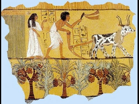 Image result for jobs ancient egypt