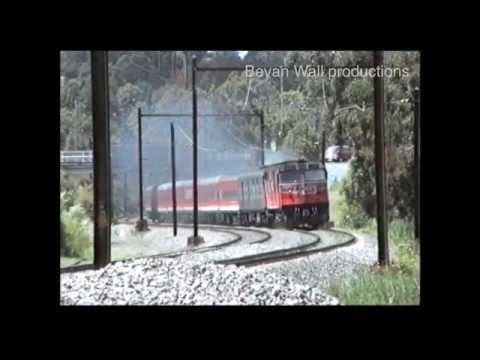 The Grafton Express - 1993