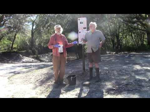 Water quality testing, Withlacoochee River, Knights Ferry Boat Ramp 2020-10-30