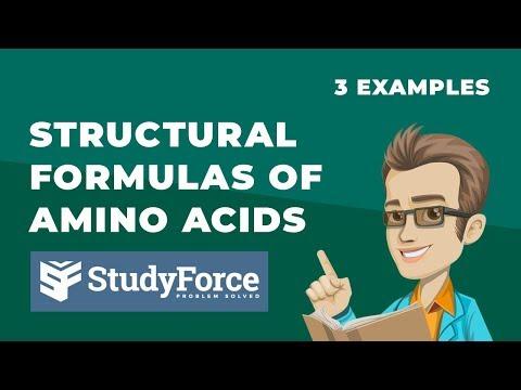 Structural Formulas Of Amino Acids
