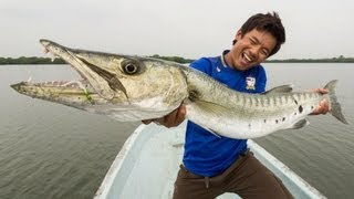 Adventura:Hugh Barracuda! ปลาสากคาริเบี่ยน