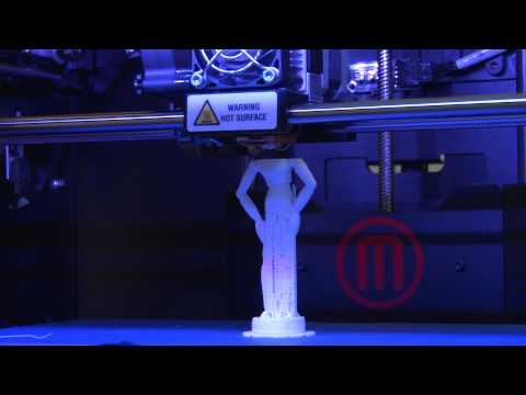 3D Printing at the Digital Scholarship Center
