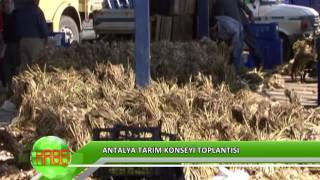 Antalya'da tarım arazileri korunacak