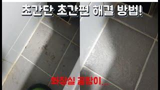 화장실 곰팡이 제거 도전!!!ㅣ 화장실 청소 해볼까?